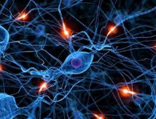 Averiguan que funciona mal en el cerebro durante el Párkinson